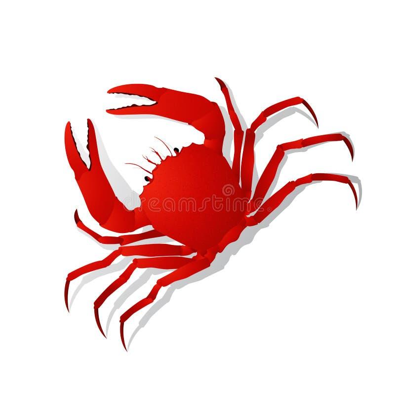 Röd krabba stock illustrationer