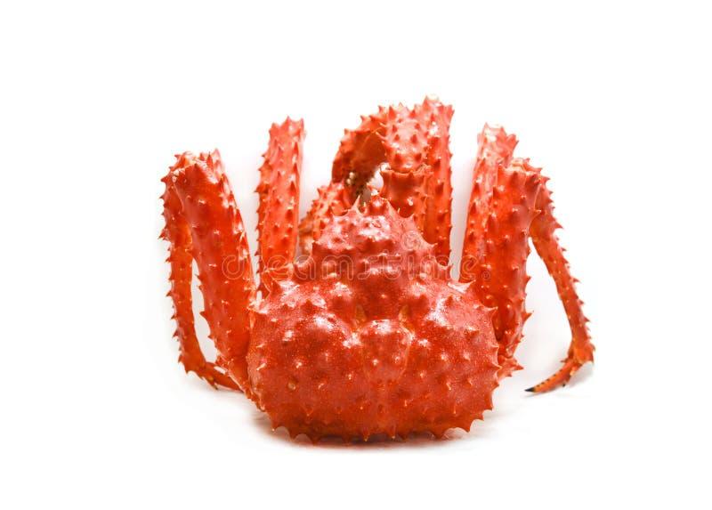 Röd krabba/alaskabo ånga för konung Crab Cooked eller kokat på vit bakgrund - ny krabba hokkaido arkivbild