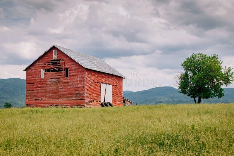 Röd ladugård i fältet fotografering för bildbyråer