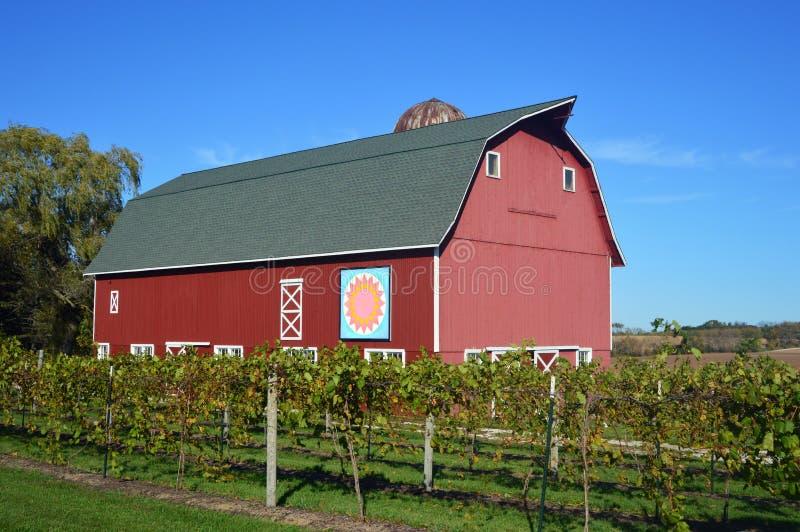 Röd ladugård med vingården arkivbild
