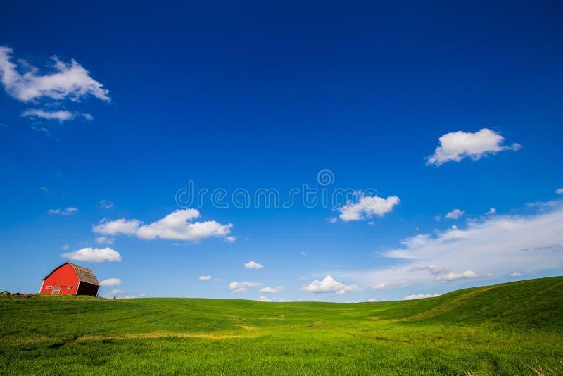 Röd ladugård och grönt fält arkivbilder