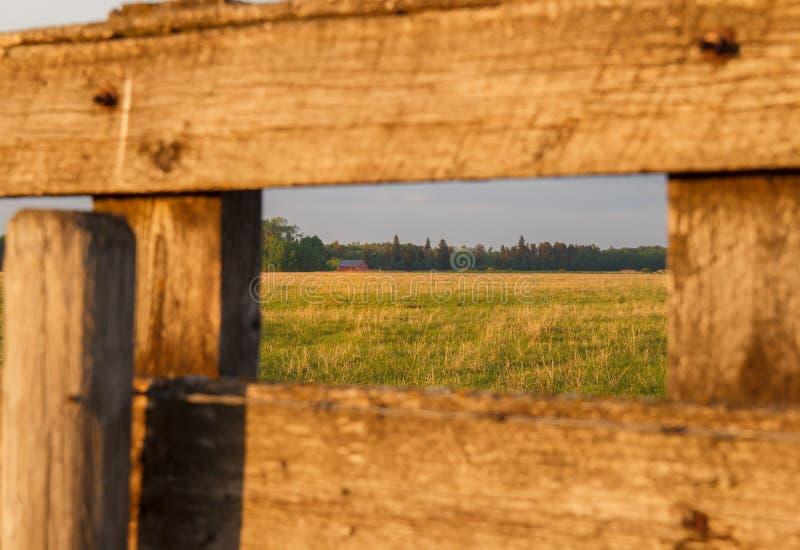 Röd ladugård som inramas av wood bräden royaltyfri bild