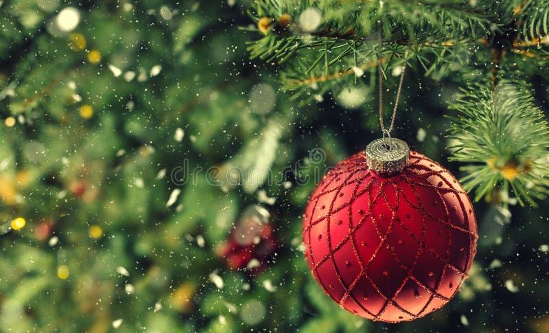 Röd lyxig boll för jul på trädfilialer i snöig atmosfär arkivfoton