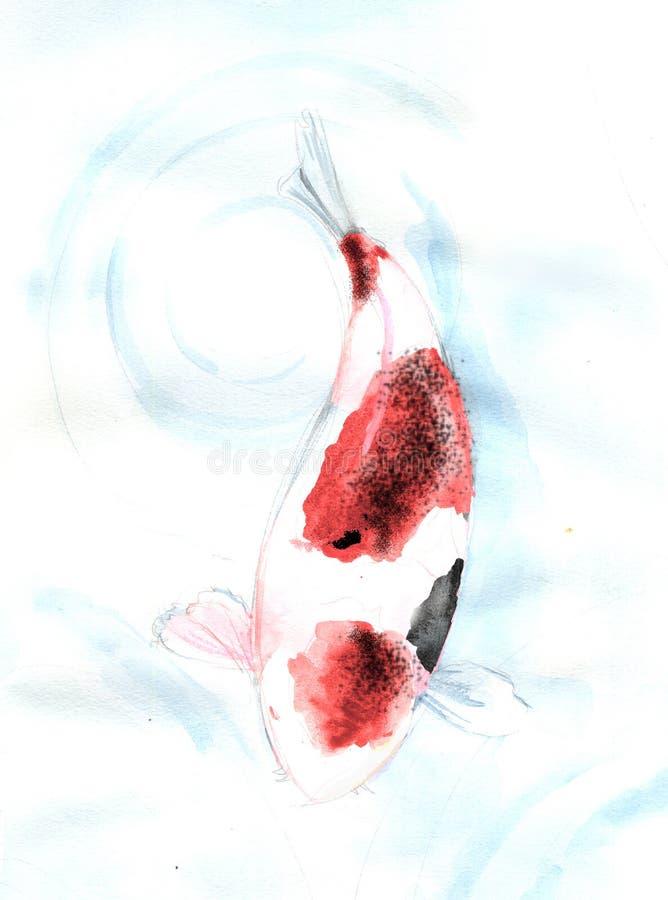 Röd målning för vattenfärg för fisk för fläckKoi carp vektor illustrationer
