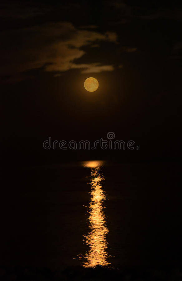 Röd moon royaltyfri fotografi