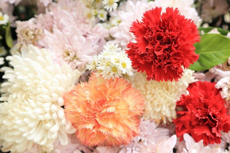 Röd nejlika i bukett för för rosa färger och vita blommor fotografering för bildbyråer