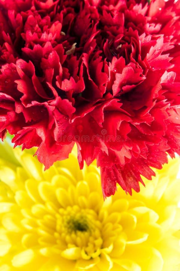 Röd nejlika- och gulingkrysantemum i blommabuketten royaltyfri bild
