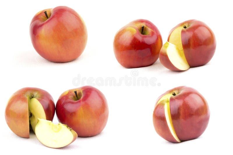 Röd och gul äpplesamling Uppsättning av frukt som isoleras på vit arkivbilder