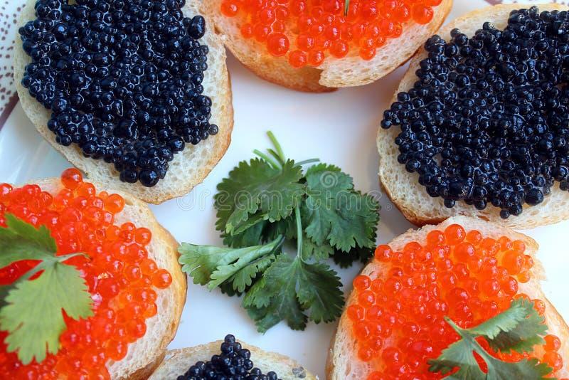 Röd och svart kaviar av fisklögner på vetebröd royaltyfri fotografi