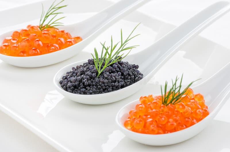 Röd och svart kaviar på skedar royaltyfri bild