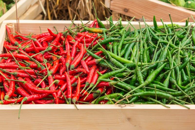 Röd peppar och paprika på hylla fotografering för bildbyråer