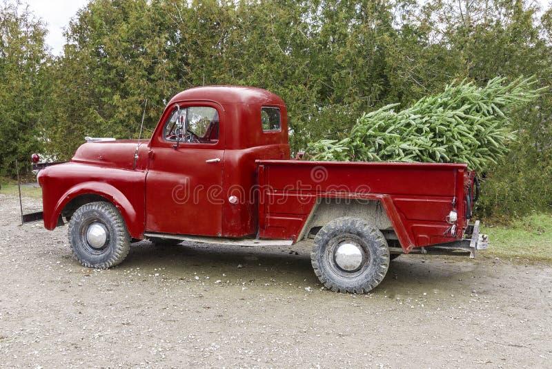 Röd pickup för gammal tappning som bär en julgran i vara fotografering för bildbyråer