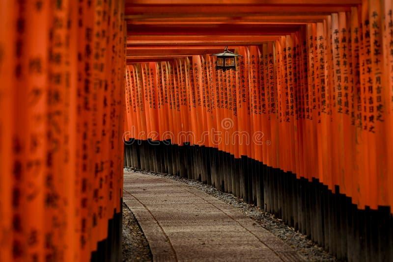 Röd port Torii på den Fushimi Inari Taisha relikskrin, Kyoto Japan royaltyfri fotografi