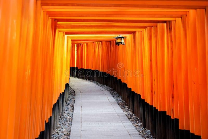 Röd portväg, toriikorridor i Fushimi Inari Taisha, Kyoto, Japan royaltyfria bilder