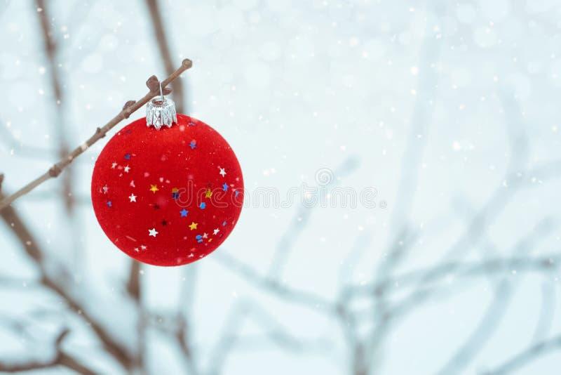 röd prydnad för sammetjulgranboll med stjärnor på snöbakgrund Julferiebakgrund med litet, kopieringsutrymme arkivbild