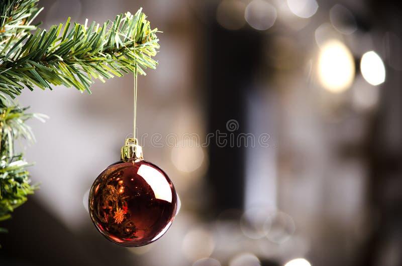 Röd prydnad på julgranen - mjuk fokus arkivbilder
