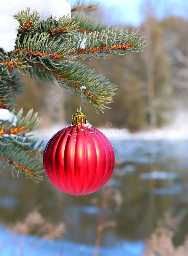 Röd ribbad julgarnering på snö som utanför täckas, sörjer trädet vid flodstrand arkivfoto