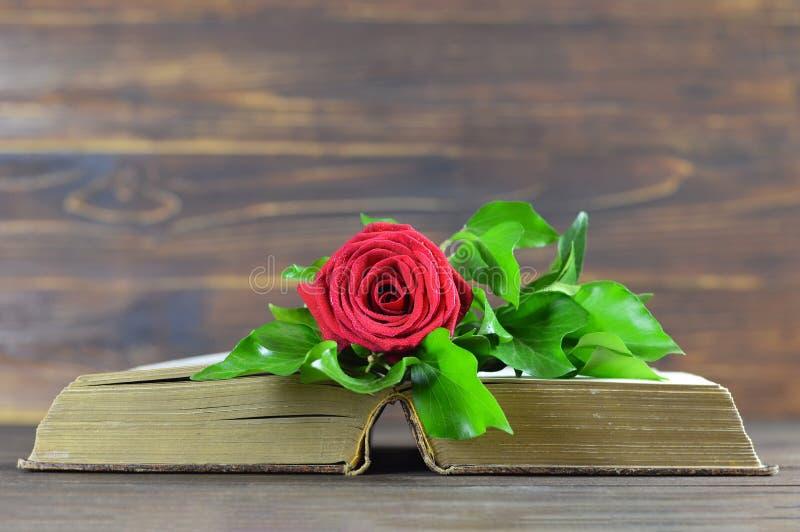 Röd ros på en tappningbok fotografering för bildbyråer