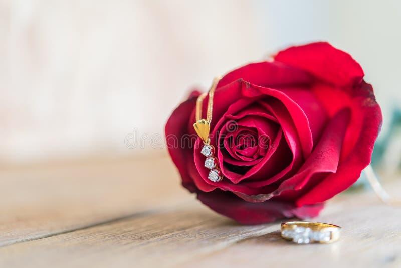 Röd rosblomma på trägolv i dag för valentin` s arkivfoto