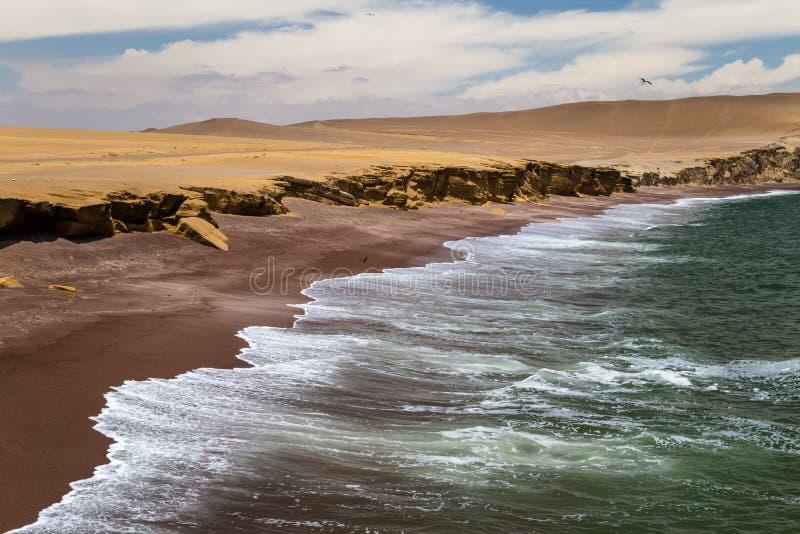 Röd sandstrand i Paracas den nationella reserven royaltyfri fotografi