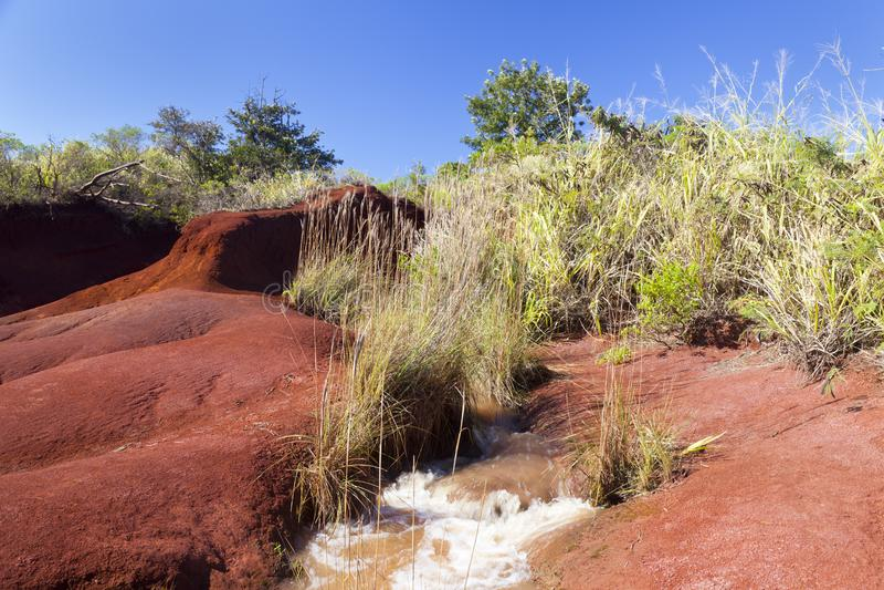 Röd smutsflod, Kauai royaltyfri bild