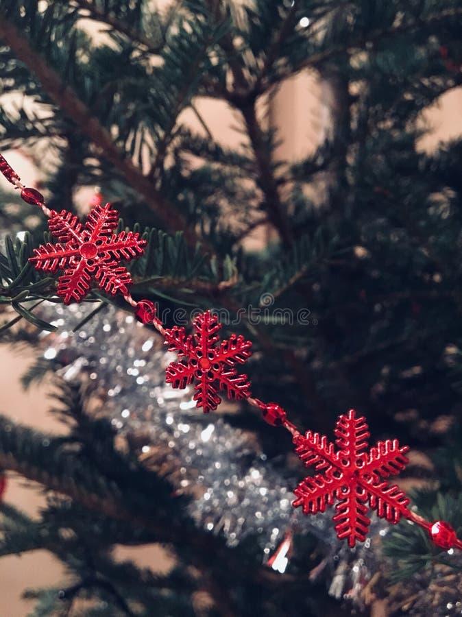 Röd snöflinga i det gröna trädet royaltyfri foto