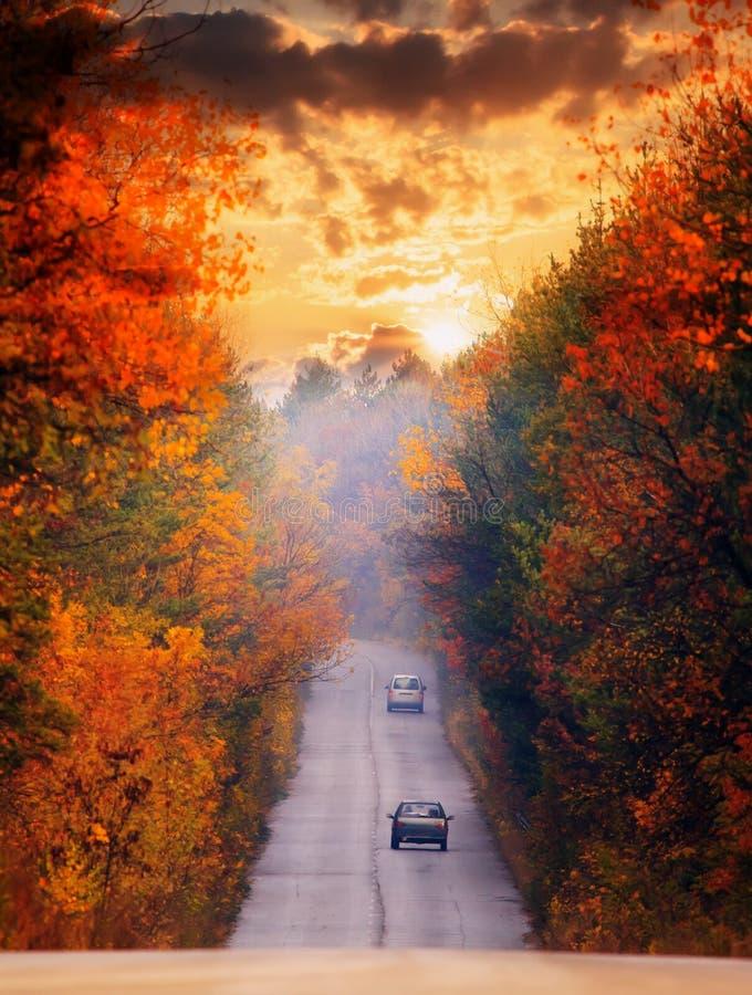 Röd solnedgång och väg royaltyfri foto