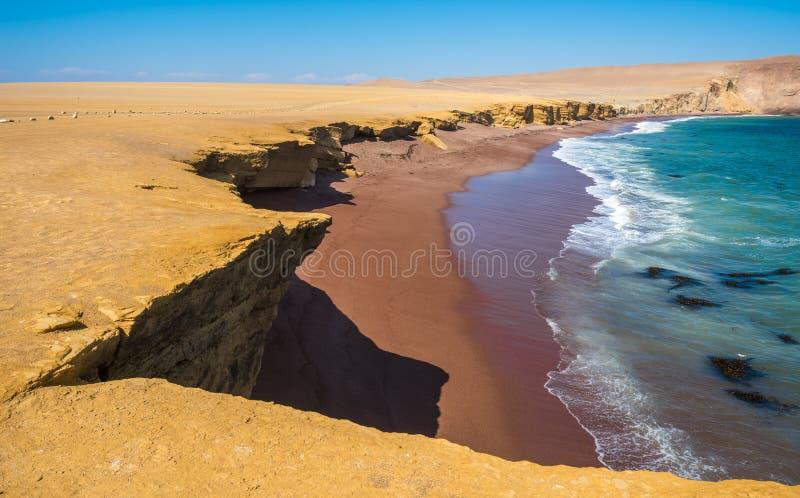 Röd strand i Paracas den naturliga reserven, Peru arkivfoto