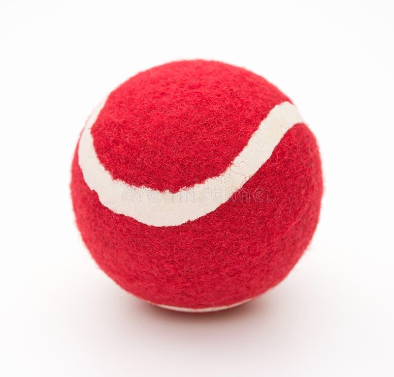Röd tennisboll för husdjur arkivfoto