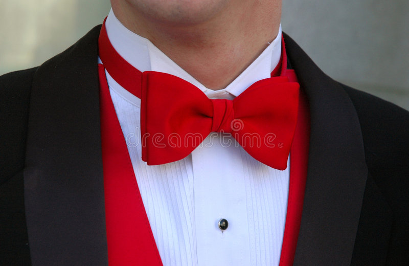 röd tie för bow royaltyfri fotografi