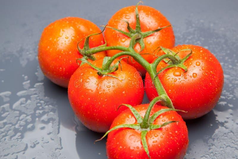 Röd tomat, med droppar av vatten som betecknar friskhet och hälsa fotografering för bildbyråer