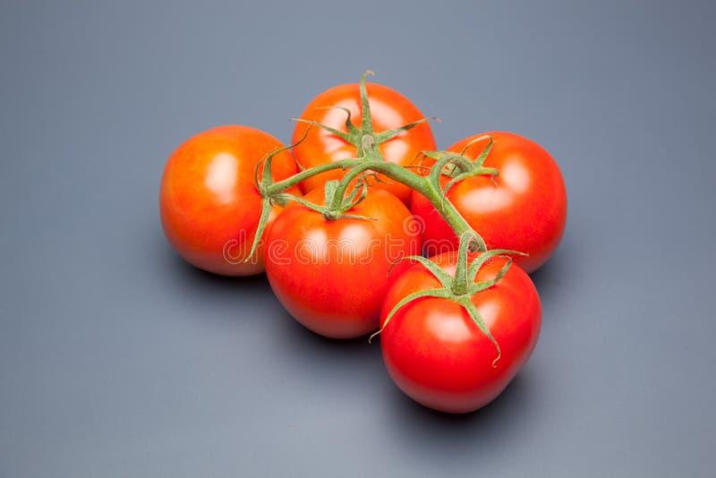 Röd tomat, med droppar av vatten som betecknar friskhet och hälsa royaltyfri bild