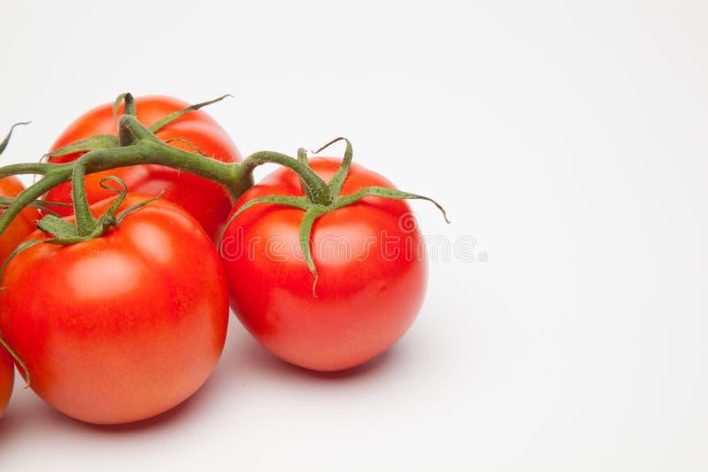 Röd tomat, med droppar av vatten som betecknar friskhet och hälsa royaltyfria foton