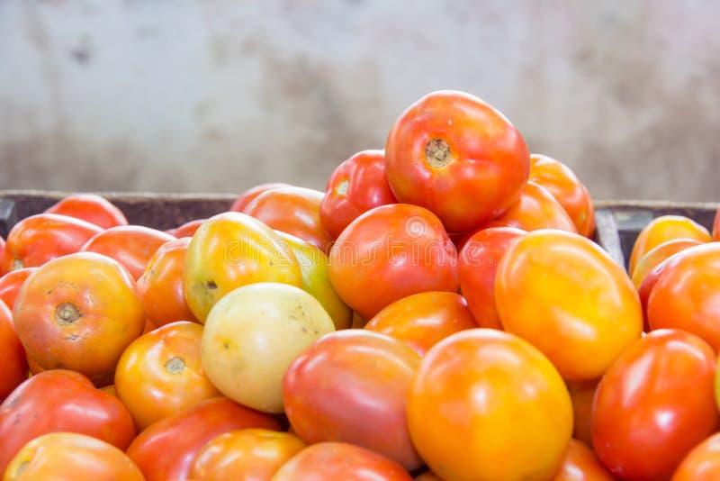 Röd tomat på tabellen i marknad arkivfoton