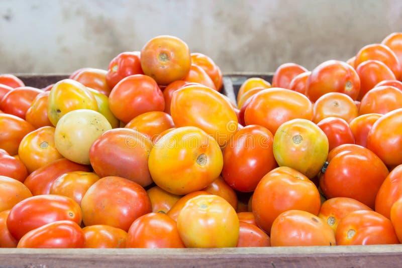 Röd tomat på tabellen i marknad royaltyfria foton