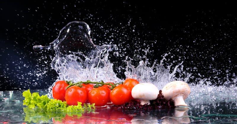 Röd tomatkörsbär, champinjoner och grön ny sallad med vattendroppfärgstänk royaltyfri fotografi