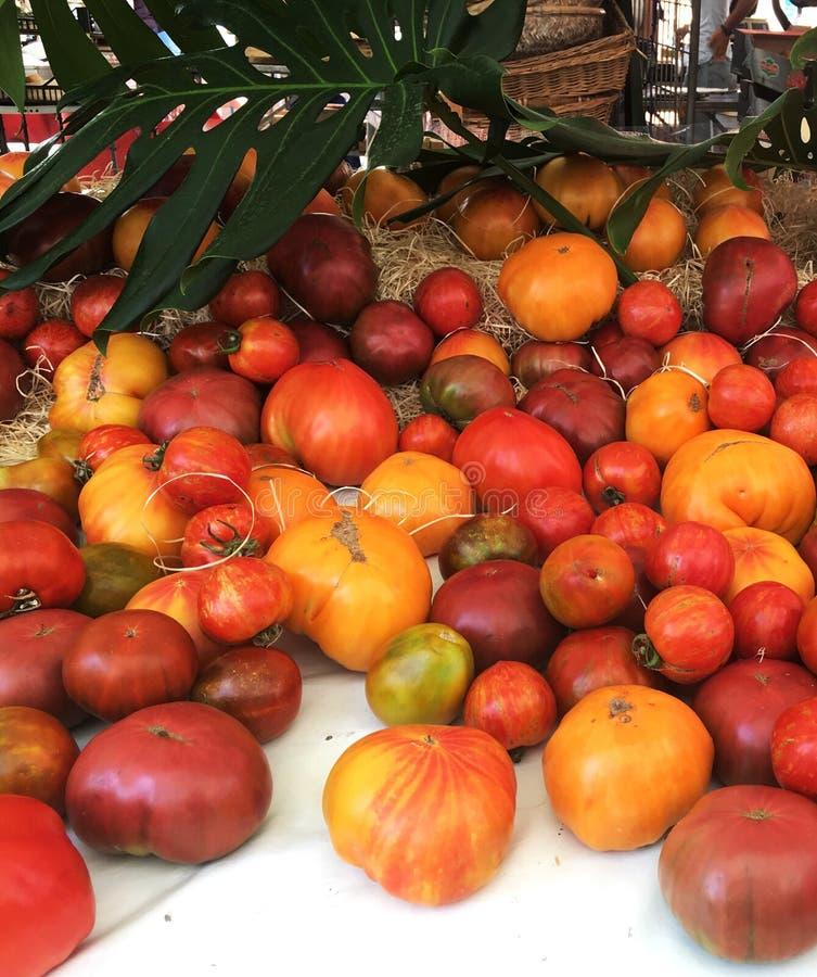 röd tomatyellow arkivfoton