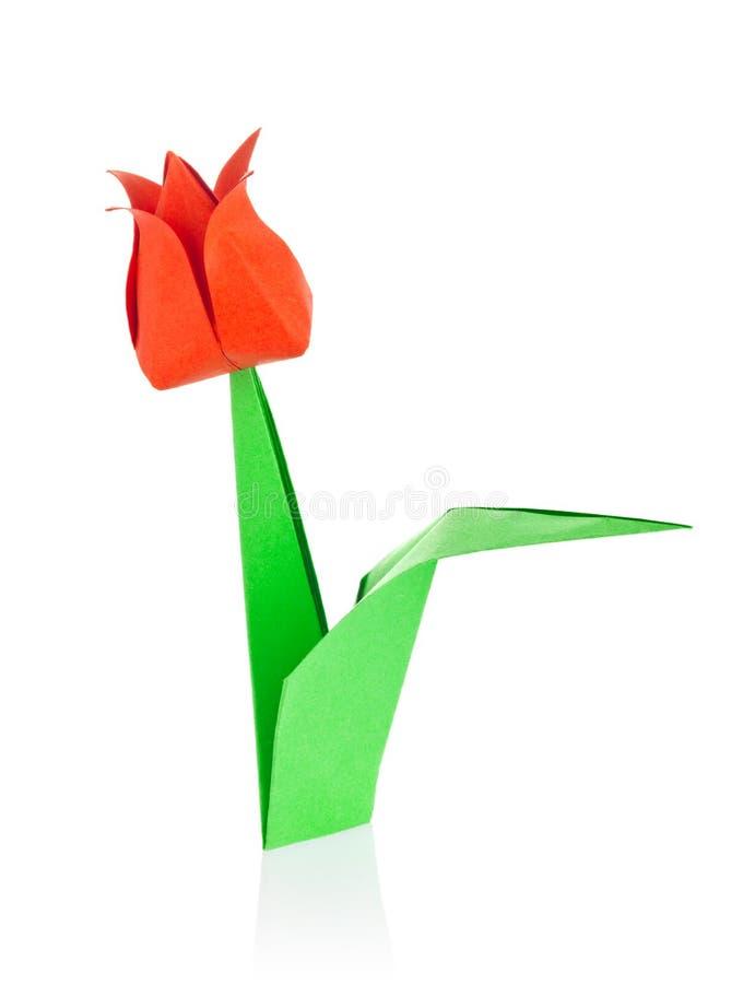 Röd tulpan av origami royaltyfri foto