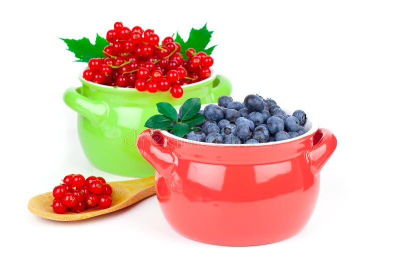 Röd vinbär och blåbär arkivbild