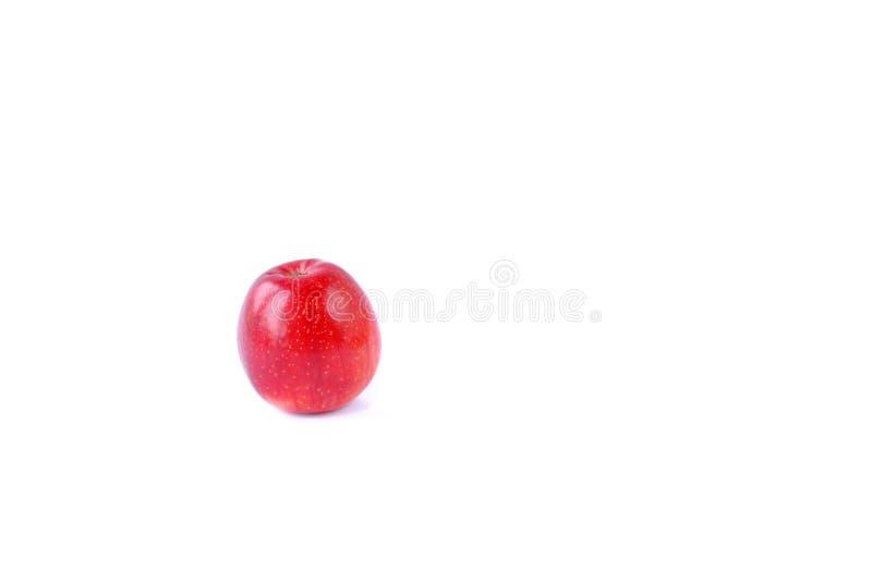 röd white för äpplebakgrund royaltyfri fotografi