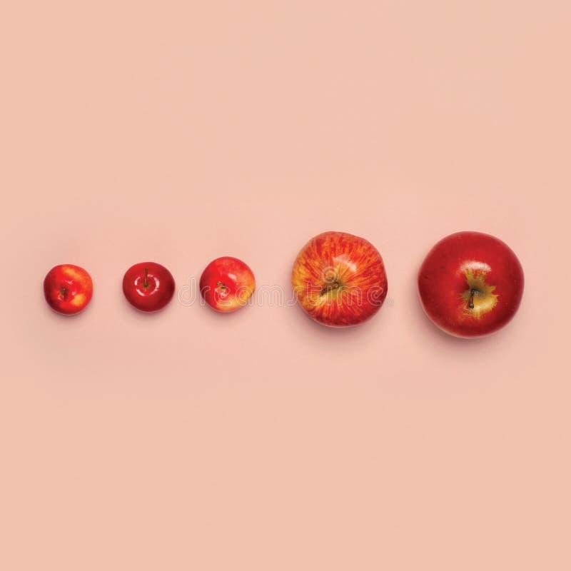 Röda äpplefrukter för grupp som isoleras på rosa bakgrund, idérik modeminimalism arkivfoton