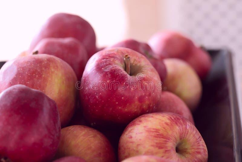 röda äpplen Bakgrund Kantjusterat kort royaltyfri fotografi