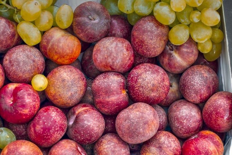 Röda äpplen och vita druvor på ståndet arkivfoton