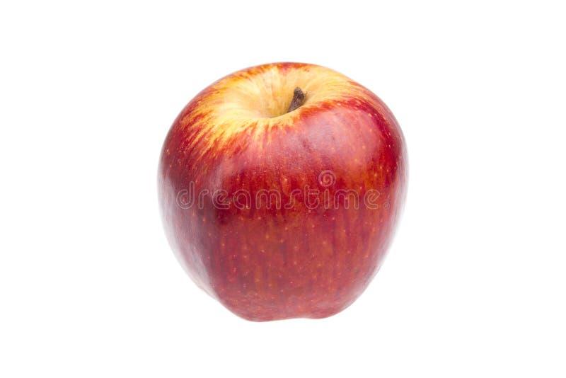 Röda Aple mognar arkivbilder