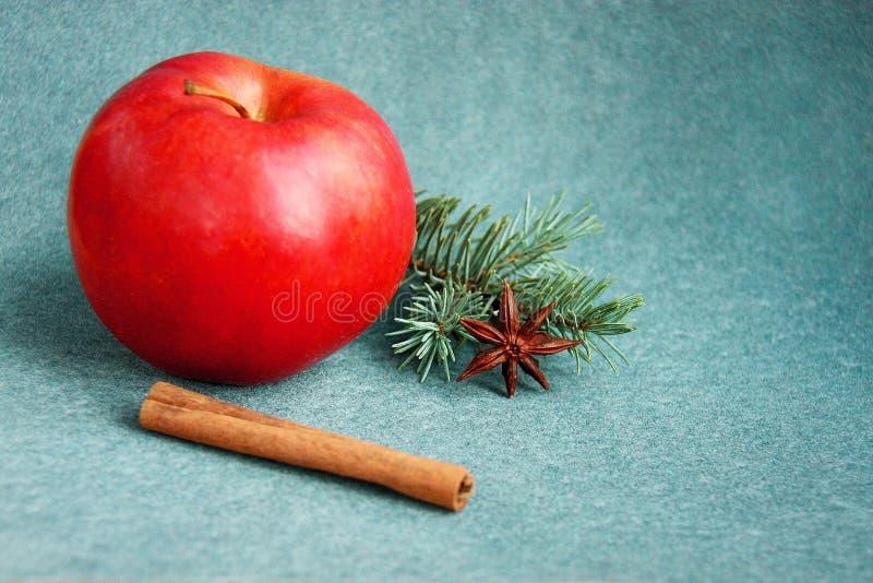 Röda Apple med stjärnaanis, kanel och gran på sammetbakgrund arkivfoton