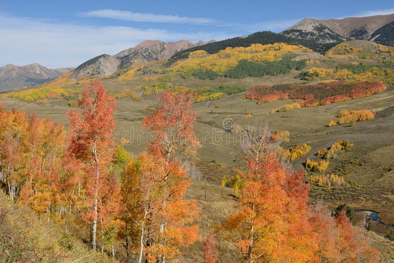 Röda Autumn Hill royaltyfri bild