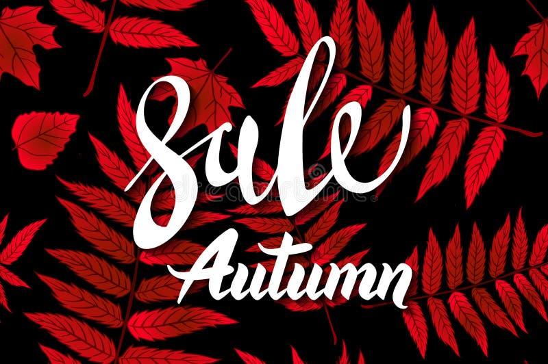 Röda Autumn Sale Background, utdragen höstkalligrafi för hand med det fallande sidor, rengöringsdukbanret och att shoppa försäljn vektor illustrationer