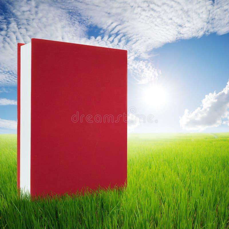 Röda böcker i gröna risfält och solhimmel royaltyfri bild