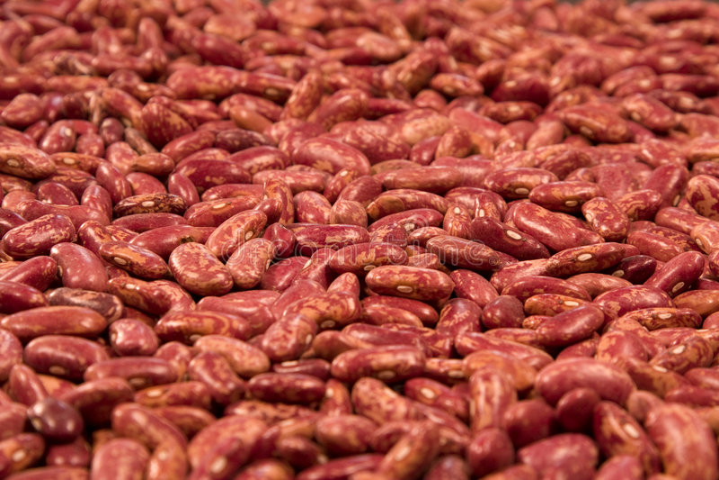 röda bönor arkivfoto