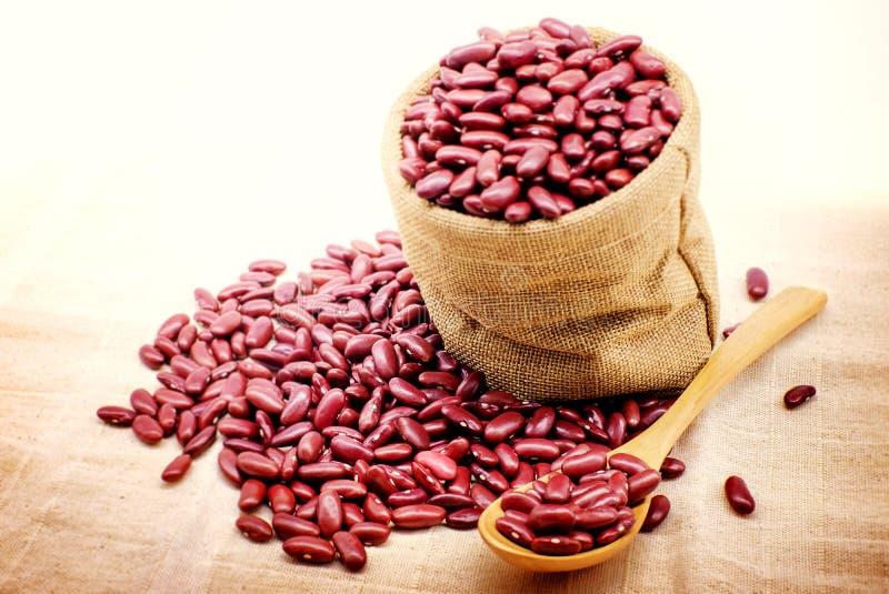 Röda bönor i sked och högen av röda bönor på säcktorkduken arkivfoton